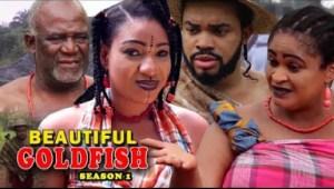 Beautiful Goldfish Season 1 - 2019